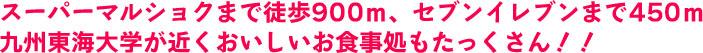 スーパーマルショクまで徒歩900m、セブンイレブンまで450m 九州東海大学が近くおいしいお食事処もたっくさん!!